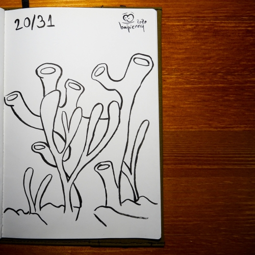 #inktober 20 #coral (picture 2267)